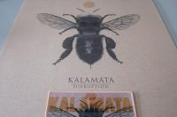 Kalamata2017_1